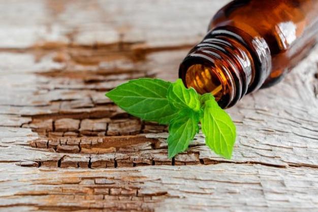 Tinh dầu hạt tiêu đen, phương thuốc tuyệt vời cho sức khỏe